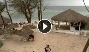 Webcam live spiaggia Los Corales Bavaro