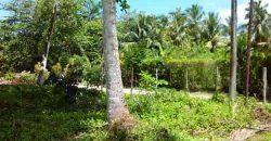 Terreno edificabile a 500 metri da playa bonita
