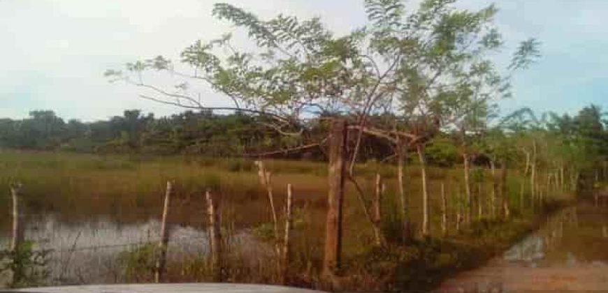 Vendesi lotti di terreni edificabili a 300 metri dal mare Las Terrenas