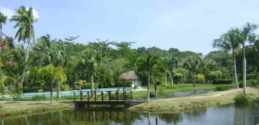 Residence ville di lusso con campo da golf a Las Terrenas