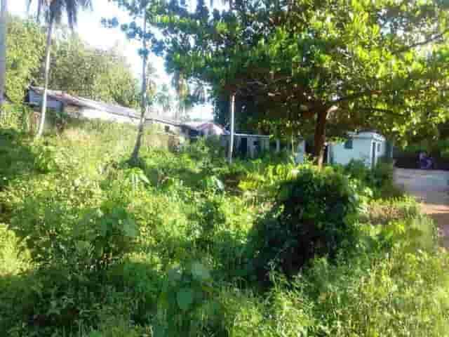Vendiamo terreni edificabili al centro di las terrenas