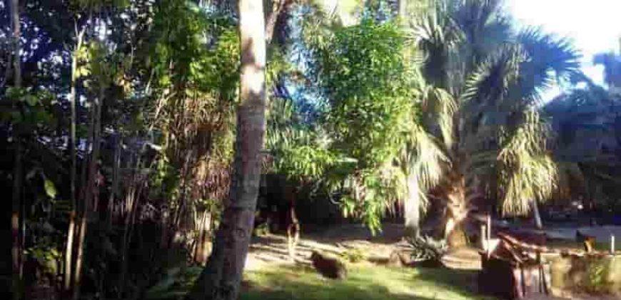 Vendesi terreno edificabile a 40 metri dalla spiaggia a Las Terrenas