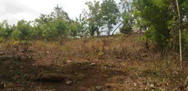 Vendiamo terreno la granja de Las Lerrenas