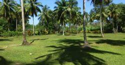 Vendesi terreno con progetto approvato El Limon