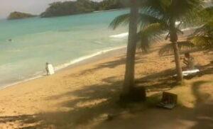 Webcam dal vivo nel golfo di Playa La Bonita